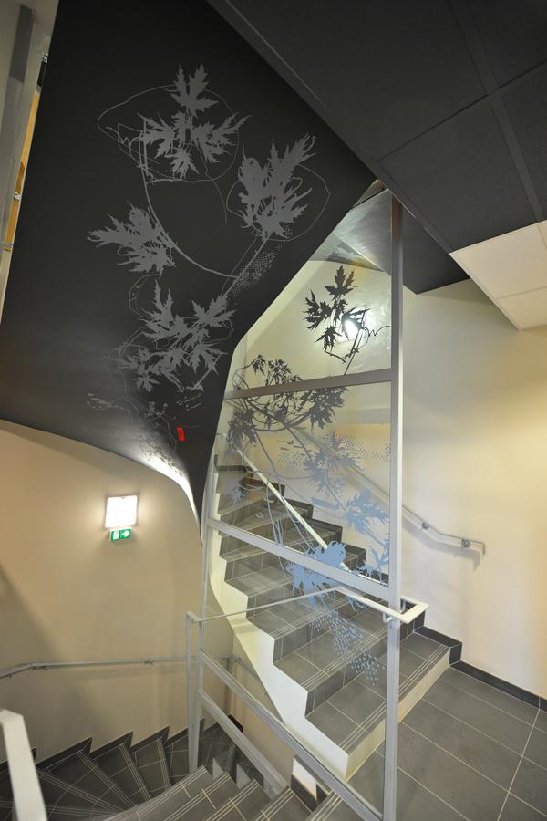 Caisse d'épargne de Picardie - Design mural sur-mesure